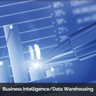 Business Intelligence / Data Warehousing